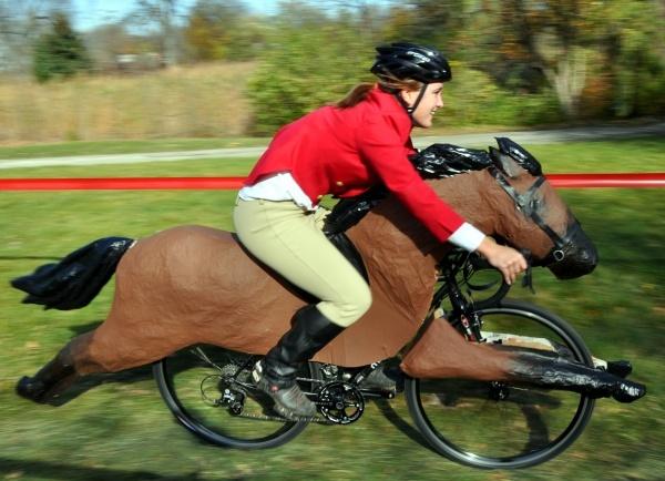 velo-cheval
