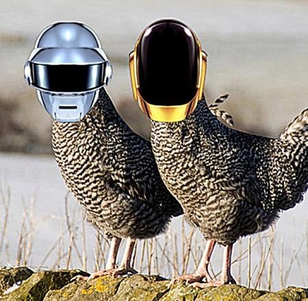 small_daft chickens