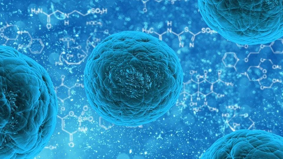 Coronavirus : 3,7 millions de Français touchés selon l'Institut Pasteur